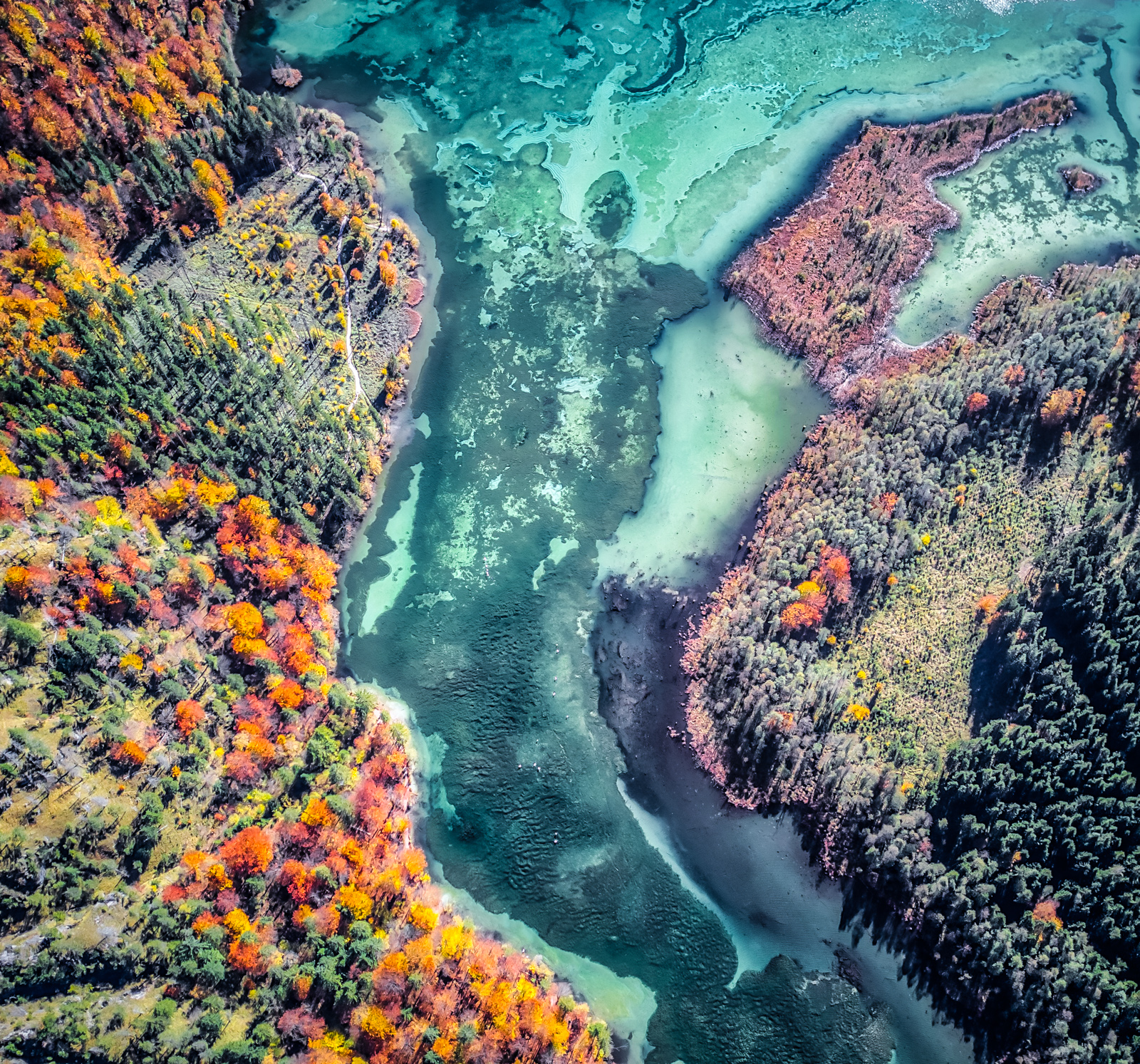 Drone Photography in Fall